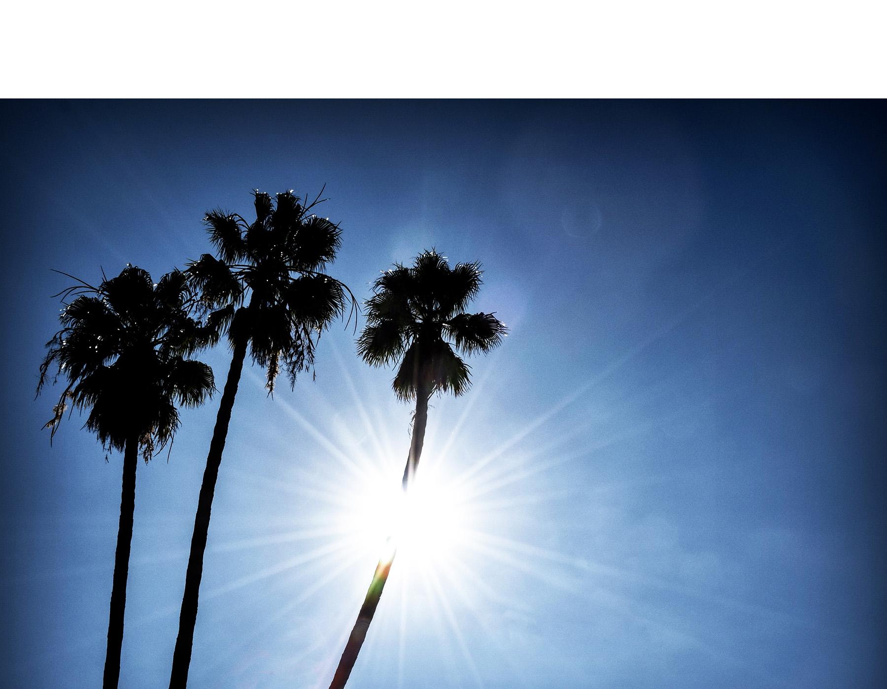 follow-the-sun